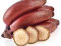 BananasFruit_94236_Red_Bananas_bunch1-m-1000px